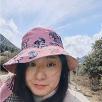 Wang Mi