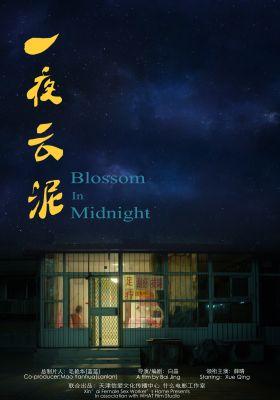 Blossom in Midnight