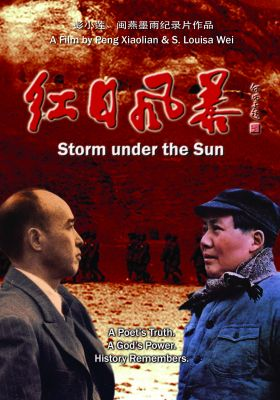 Storm under the Sun (Chinese Version)